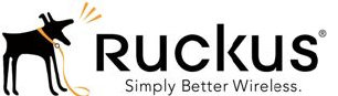 Ruckus wireless systems